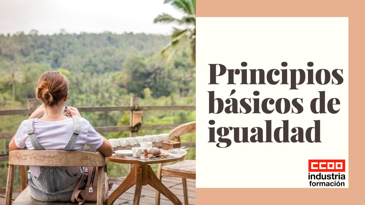 Principios básicos de igualdad
